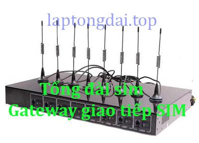 tong-dai-sim-SMG4008